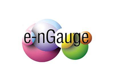 e-nGauge