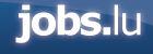 The Network - Jobs.lu logo