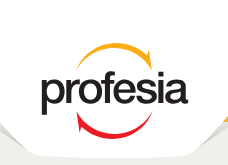 The Network - Profesia logo